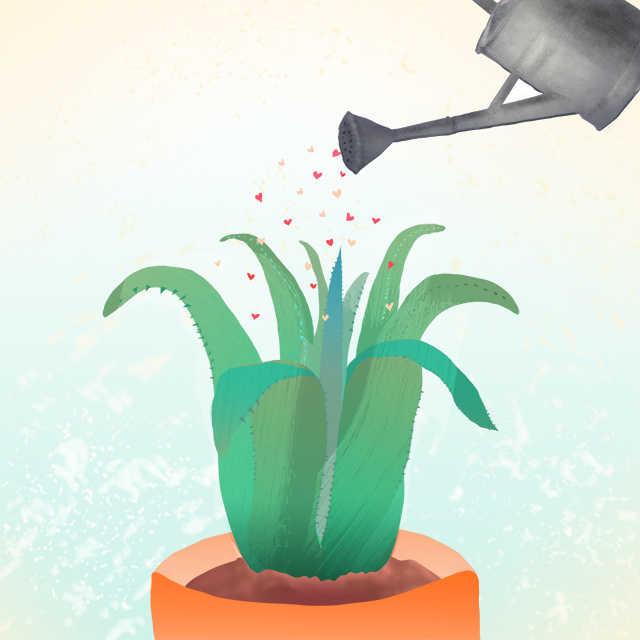 Aloe Vera ilustración a color | copyright by Nailistas